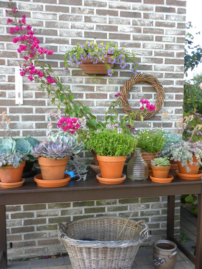 nice pots and wicker baskets on outdoor table at my neighbours' !