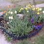 2008_05_02_end_april_rock_garden
