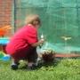 June_garden_2010_009