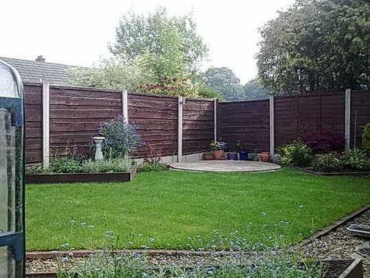 Back Garden June 2010