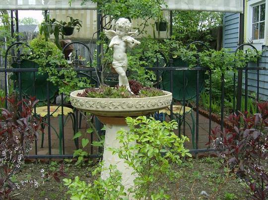 Back garden - May 2008