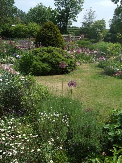 Part of front garden.