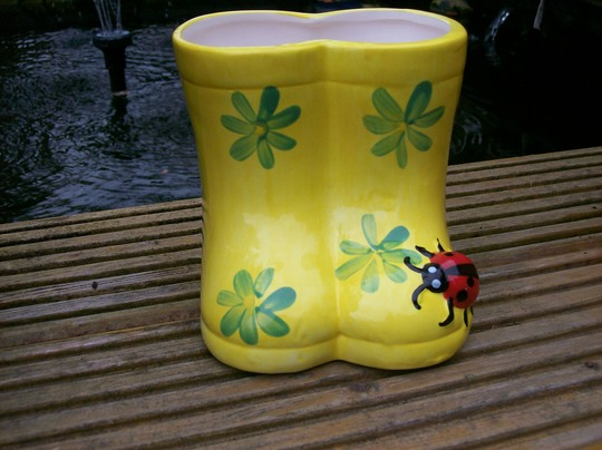 planter wellies