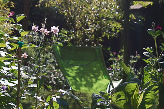 The garden: a place to relax