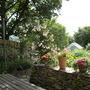 Veg Garden 09