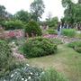 Ash_cottage_garden