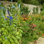 Herbaceous Border at Rousham gardens