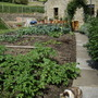 Looking up the fruit and veg garden