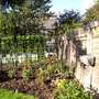 My garden in 2007