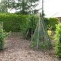 garden with tipis