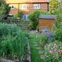 My garden June 2010