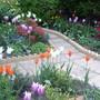 Winter/Spring garden