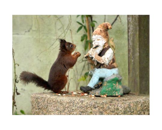 The photo that won me £500 of garden vouchers!!!