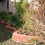 2010_Garden_014.jpg