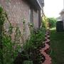 2010_Garden_019.jpg