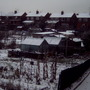 bleak winter on the allotments