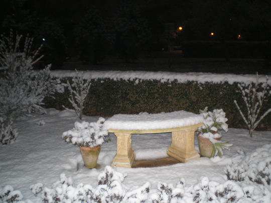 Snowy front garden