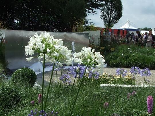 The bubble Garden