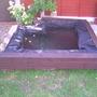 Pond half done