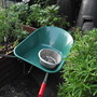 My new wheelbarrow