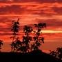 Sky_4.40am._my_qucumber_006
