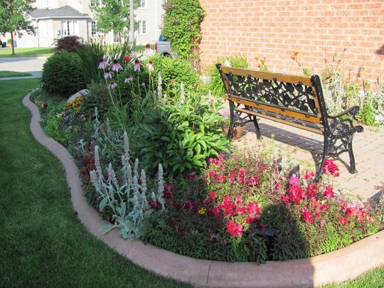 Front Garden July 2010