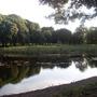 Dog Pond Phoenix Park