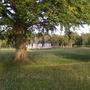 Phoenic_park_1