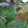 Herbacious border at Arley