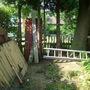 garden_kid_s._june_10_006.jpg