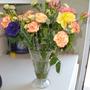 indoor flowers  (13)