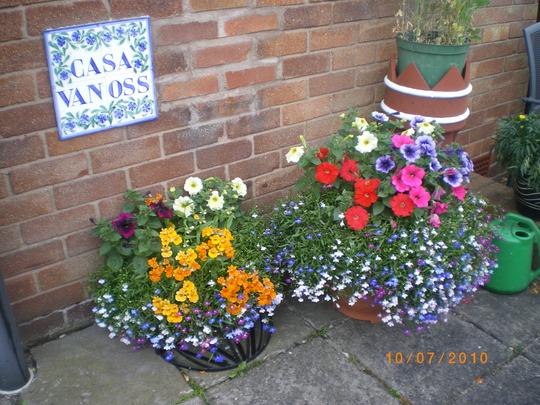 Pots on my patio