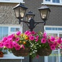 Garden lamp & flower basket