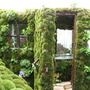 &#x27;Green Door&#x27; garden at the Chelsea Flower Show 2008