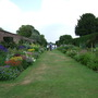 Arley - Herbacious Borders (June)