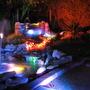 my garden at night 3