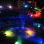 my garden at night 5