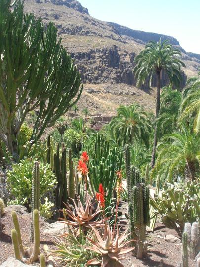 Palmitos Park - Gran Canaria - July 2010