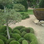Abbey house Topiary