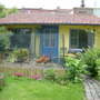 garden shed at my sister's in Antwerp (with chicken run)
