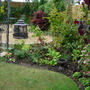 The old boggy area, replanted now.