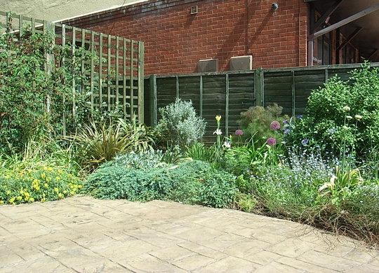 Open Garden 2008 - 3