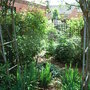 Open Garden 2008 - 5