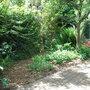 Hidden_garden