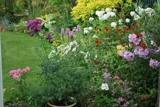 Summer Border.........Still a good deal of colour...