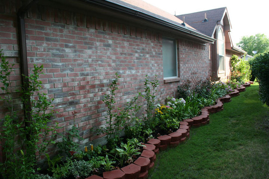 2010_Garden_152.jpg