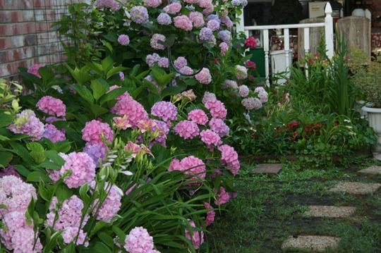 2010_Garden_167.jpg