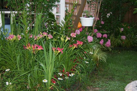 2010_Garden_168.jpg