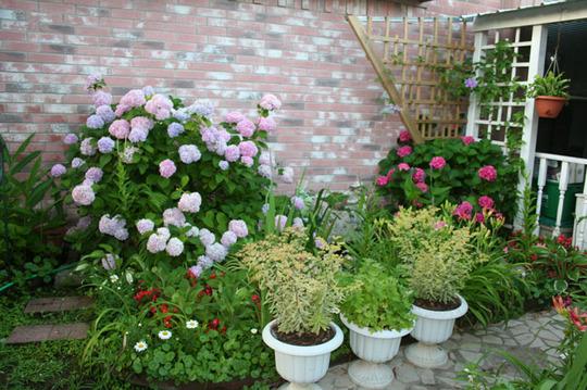 2010_Garden_169.jpg