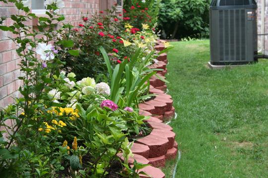 2010_Garden_170.jpg